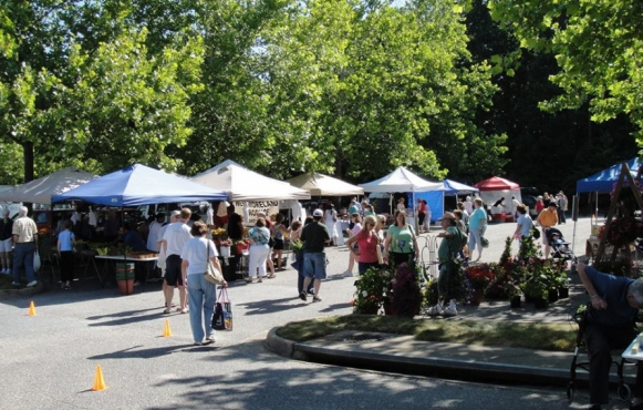 Brandermill Green Market